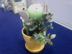 Werobo 植木鉢ロボット